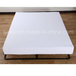 High Quality Bed Bug/Allergy Relief Waterproof Mattress Encasement, Mattress Protector