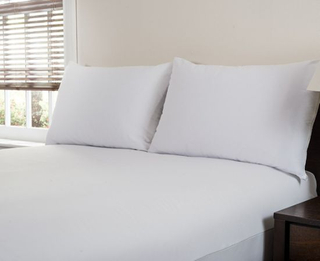 Bedbug Proof/Waterproof Pillow Protector